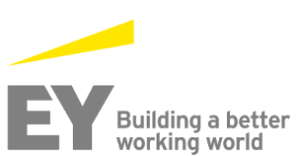 Partener petrecere corporate ernst & young